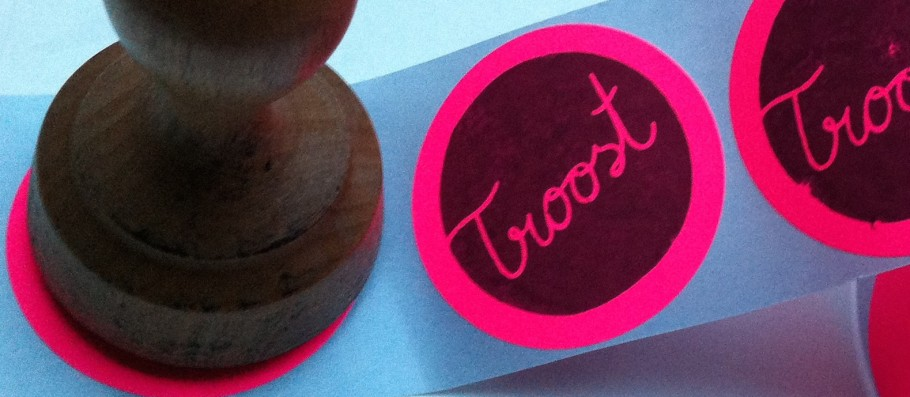 logo-troost-small-910x397